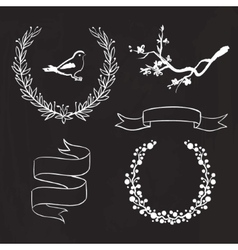 hand drawn spring graphic set on blackboard vector image
