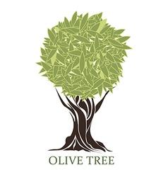logo olive tree vector image