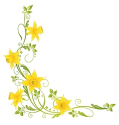 Daffodils easter spring vector