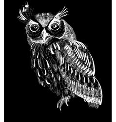 Owl hand-drawing on a black background vector