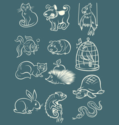 pets animals collection set icons symbols sketch vector image