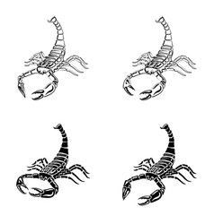 set of black and white scorpions for tattoos vector image