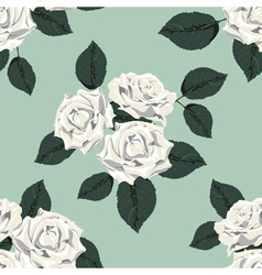 Classic vintage seamless pattern with white roses vector image vector image
