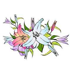 Lily Flower Bouquet vector image