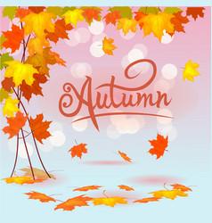 autumn foliage sale banner vector image
