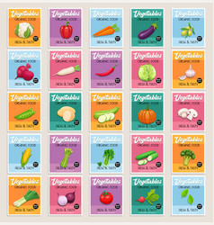 banners or card vegetables vector image