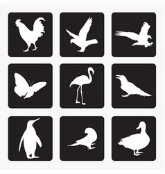 birds icons silhouettes vector image