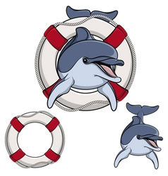 Colored of a dolphin and a life buoy vector image