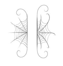 Decorative spider web border vector