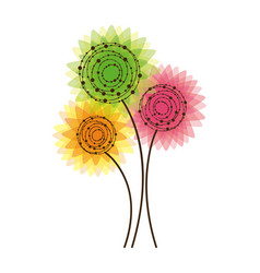 colorful rounds flowers icon vector image vector image