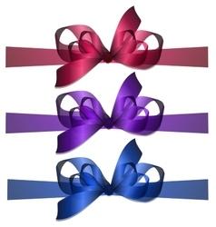 bowknot and ribbon vector image vector image