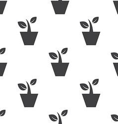 houseplant seamless pattern vector image