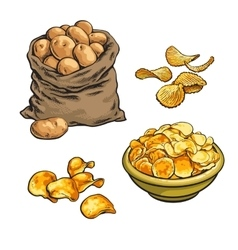 fried potato chips and fresh vector image