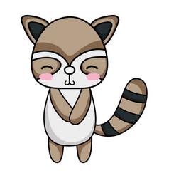 Cute and shy raccoon wild animal vector