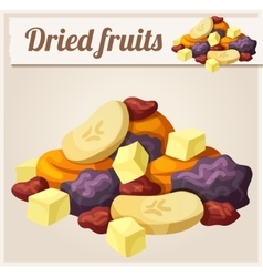 Detailed Icon Dried fruits vector