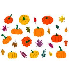Fallen leaves and pumpkins thanksgiving set vector