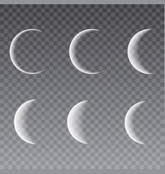 moon different phases vector image