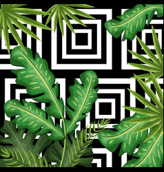 Nice and exotic leaves of plants background vector