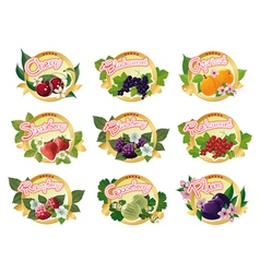 set of labels for marmalade vector image vector image