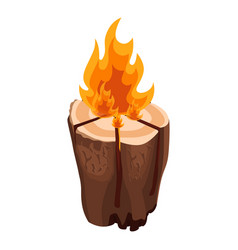 camping bonfire from tree trunk vector image