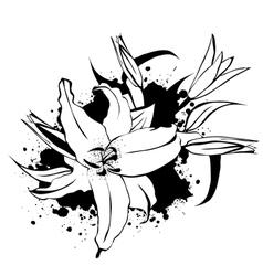 Grunge Vintage Lily vector image