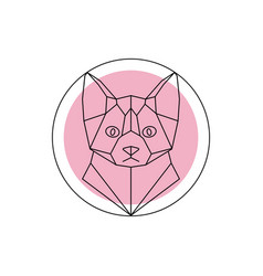 geometric animal cat head vector image