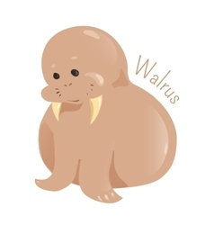Walrus isolated Child fun pattern icon vector image