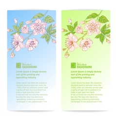Two sakura banners vector image
