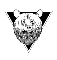 Bear hand drawn graphic vector