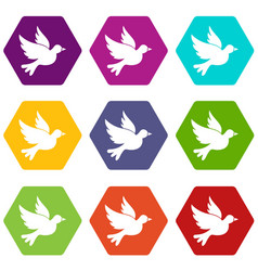 Dove icon set color hexahedron vector