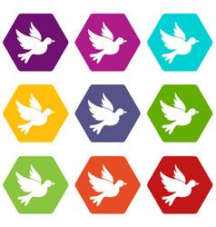dove icon set color hexahedron vector image