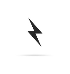 flash icon with shadow simple design vector image