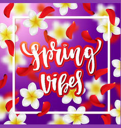Hand drawn calligraphy spring vibes vector