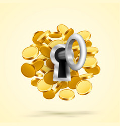 key to lock with coins vector image