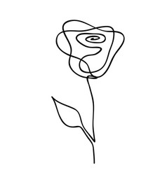one line drawing abstract rose hand drawn modern vector image