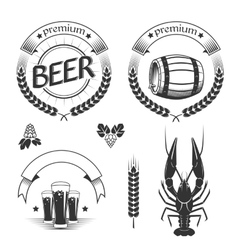 Set of beer design elements vector image