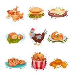 Set various chicken dishes vector