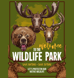 Wild animals zoo sketch wildlife poster vector