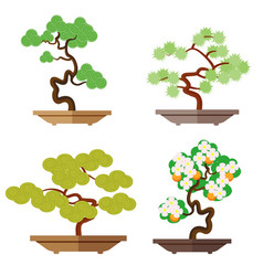 set of bonsai japanese culture is the cultivation vector image vector image