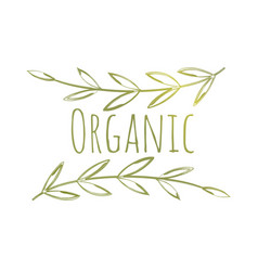 organic eco label vector image vector image