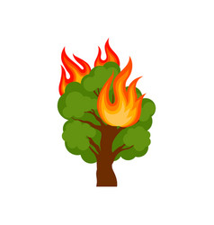 burning forest tree on a white vector image