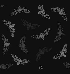 cicada insects seamless pattern with black vector image