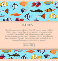 marine aqua fish banner pattern with cute vector image
