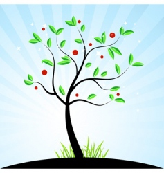 tree with berries vector image vector image