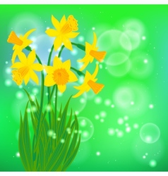 Card with daffodils on light green bokeh vector