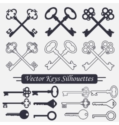 Crossed keys set vector image