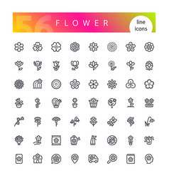 flower line icons set vector image