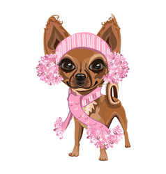 little dog in a knitted hat vector image