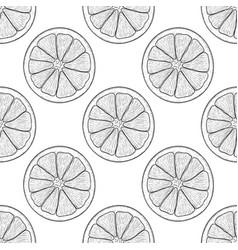 orange slice black and white hand drawn sketch vector image