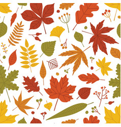 seasonal botanical seamless pattern with autumnal vector image